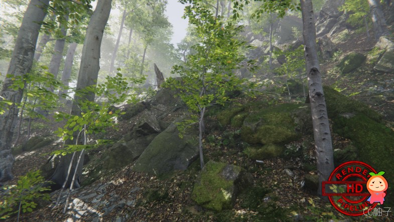 Forest Environment - Dynamic Nature 1.2