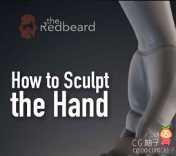 ZBrush手3D模型雕刻教程 How to Sculpt the Hand